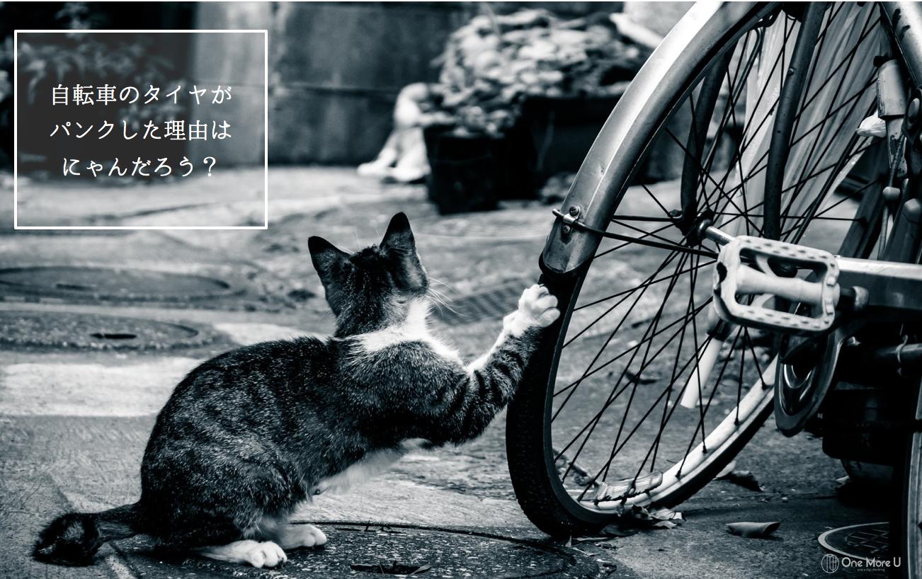 自転車のタイヤが パンクした理由は にゃんだろう?